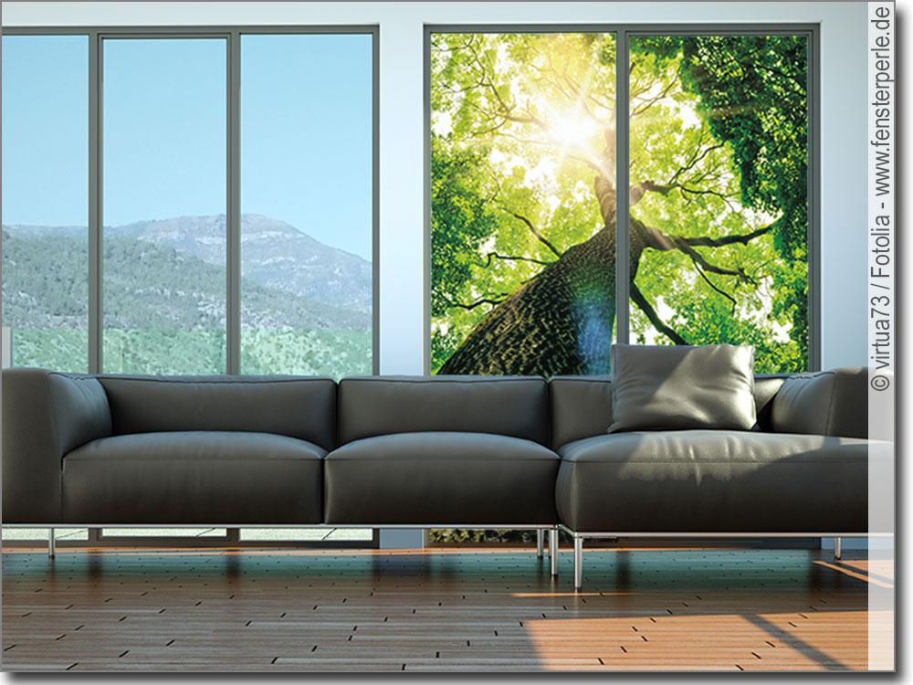 glasbild baum. Black Bedroom Furniture Sets. Home Design Ideas