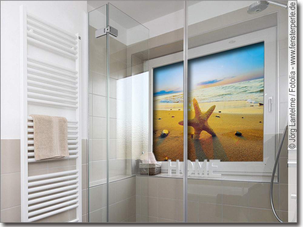 Fensterbild seestern - Glasbild badezimmer ...