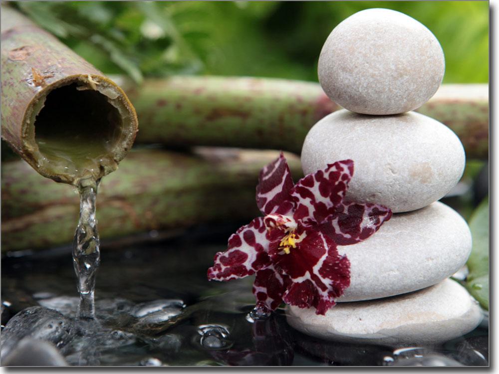 Wellness bilder steine  Fensterbild Glasbild Wellness | Klebefolie Steine