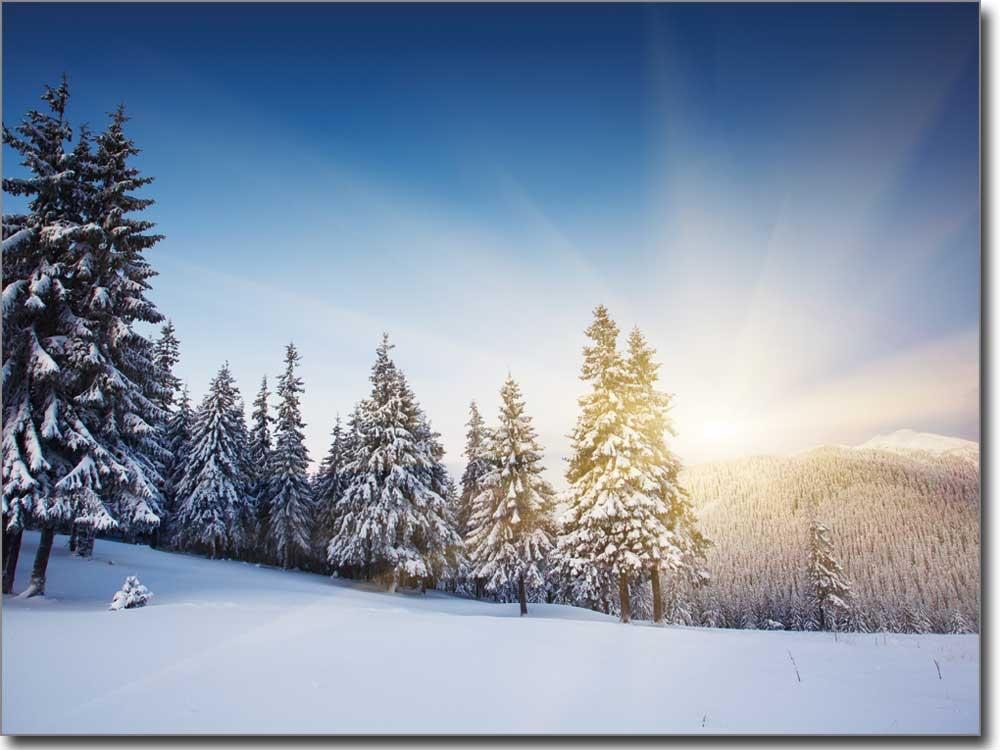 winterlandschaft glas klebefolie tannen und schnee. Black Bedroom Furniture Sets. Home Design Ideas